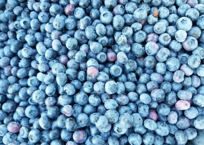 Homegrown Blueberries